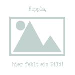Heidelbeer Sirup, bio, 500ml
